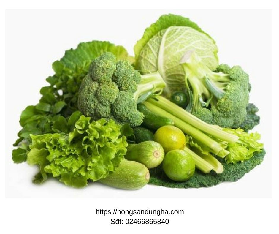"""Top 6 loại hạt giống rau cải """"lớn nhanh như thổi"""", mà chị em nên trồng tại nhà"""