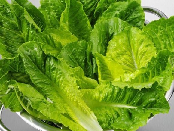 5 công thức bảo quản rau xà lách luôn tươi lâu dùng trong 1 tuần