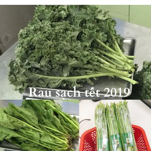 Rau sạch tết 2019