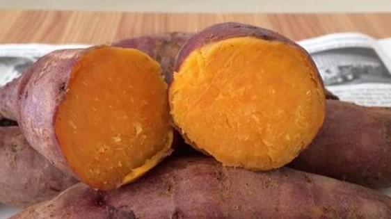 Mua khoai lang loại 1 sạch ngon tại Hà Nội với giá rẻ khó tin