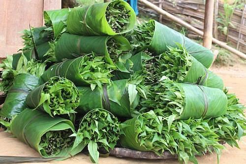 rau rừng gia lai - Rau đặc sản làm quà tết hấp dẫn
