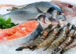 nhu cầu của thị trường hải sản đông lạnh