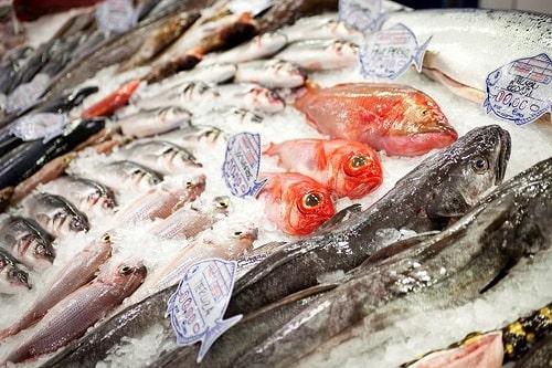 kinh nghiêm kinh doanh hải sản đông lạnh