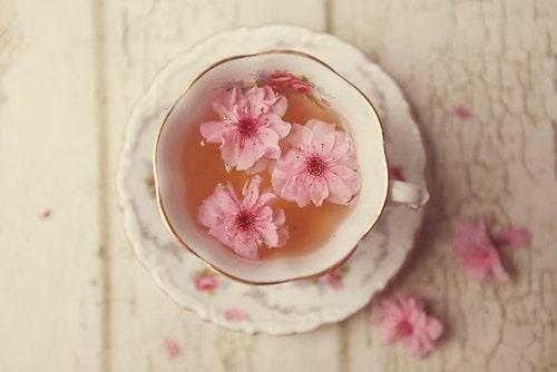 Tổng hợp 10+ loại trà giúp ngủ ngon hiệu quả